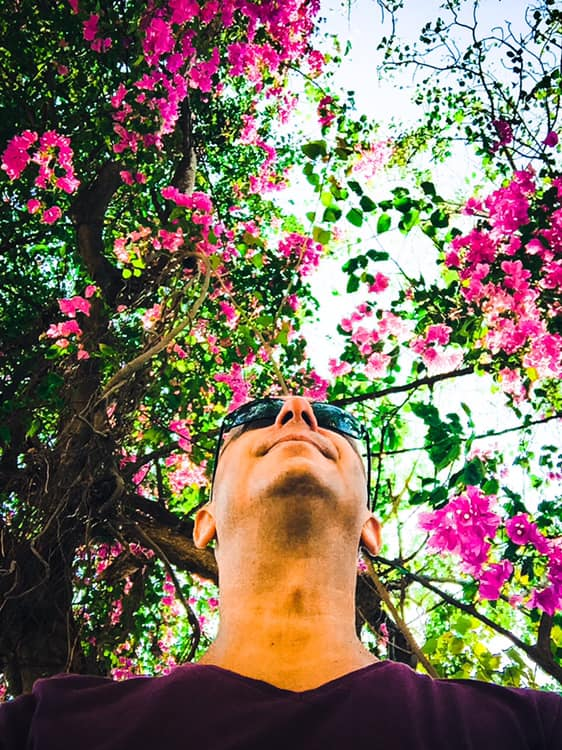 Bernie sous l'arbre du repos a Big Bouddha Koh Samui.