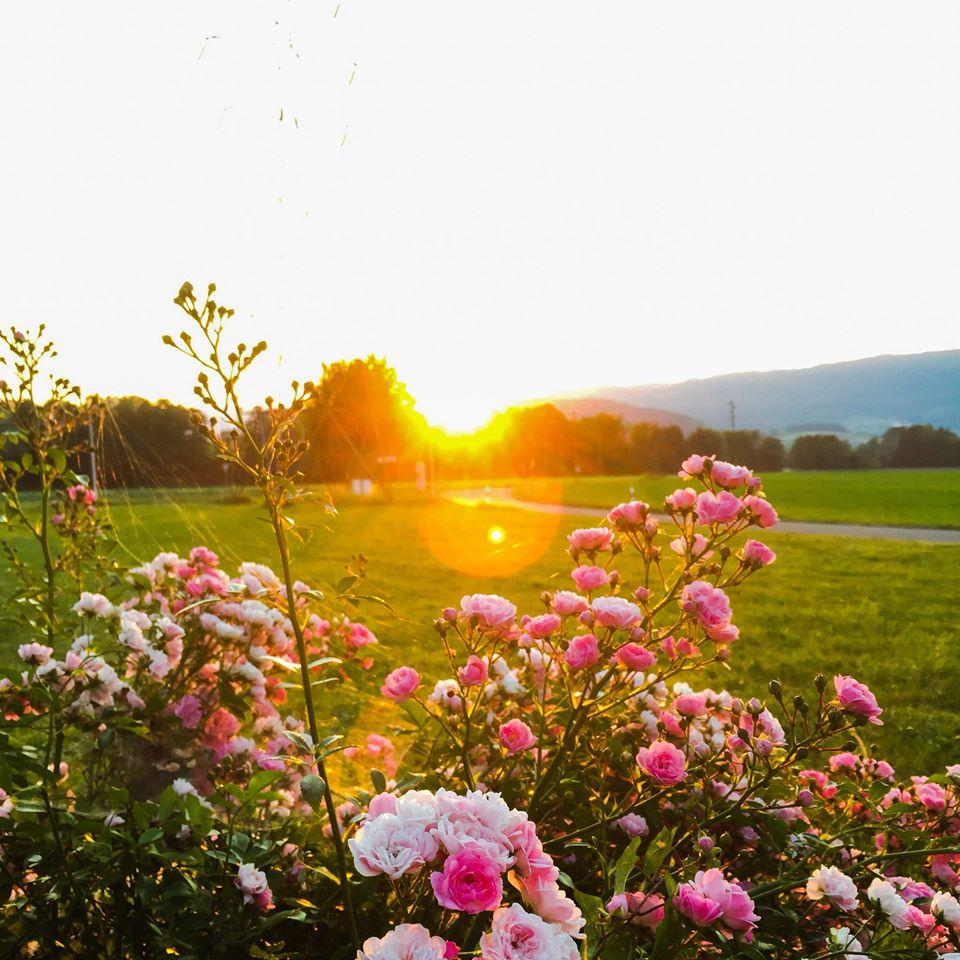 Coucher ou lever de soleil imageant le burn-out, en Suisse.