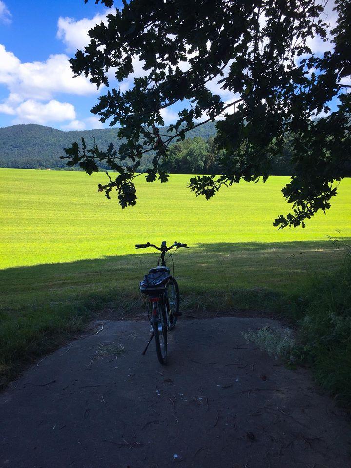 Vélo en bout de route devant un champ en Suisse.
